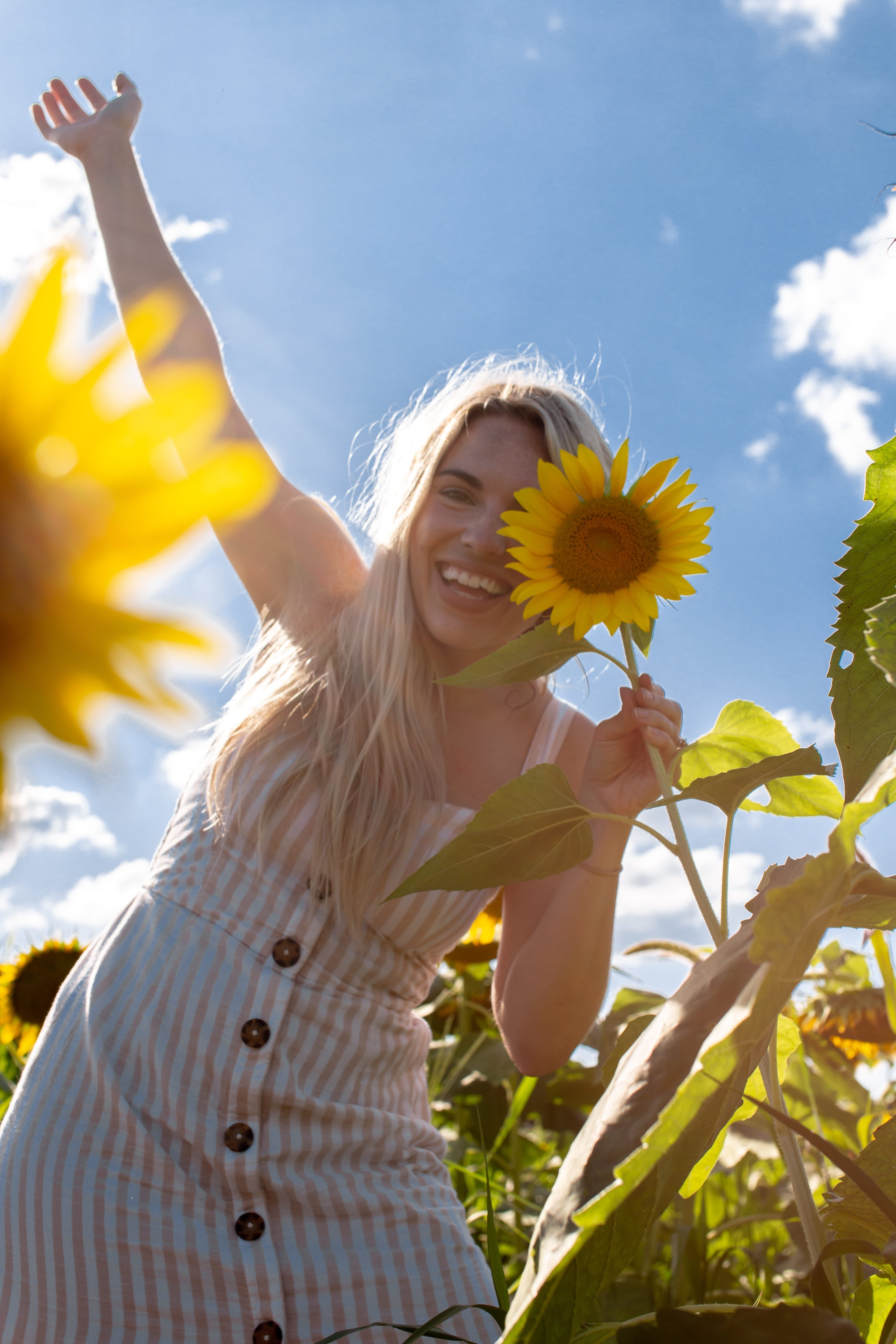 woman-smiling-in-sunflower-patch-blueskies-and-sunshine-intentional-joy-living-christian-counselling-kelowna-british-columbia-barb-egan-alive-counselling